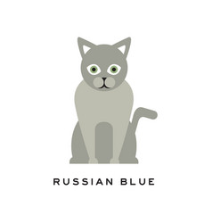 Russian blue cat adorable short-haired feline vector