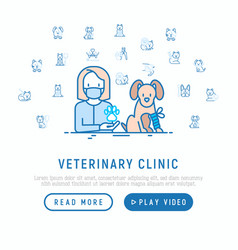 veterinary clinic concept dog with broken leg vector image