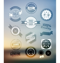 Premium and High Quality Label Icon vector image vector image
