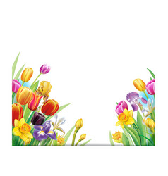 Bouquet with multicolor spring flowers vector