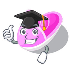 graduation shoes baby above the character rak vector image