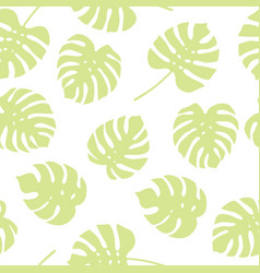 seamless pattern of green monstera leaves vector image