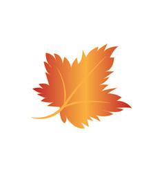 autumn summer image vector image