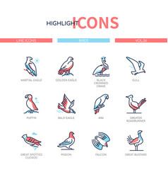 Bird species - modern line design style icons set vector