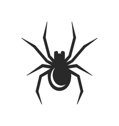 Black Spider Icon vector