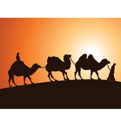 Camels and bedouins in desert vector