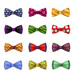 collection elegant bow ties trendy neckties vector image
