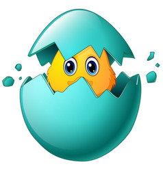 Cute easter chicks in egg shell vector