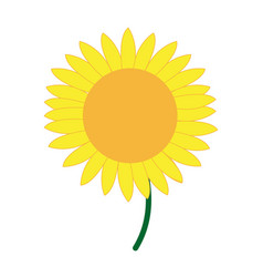 Cute flower sunflower decoration nature vector