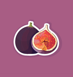 fresh juicy fig icon tasty ripe fruit berry vector image