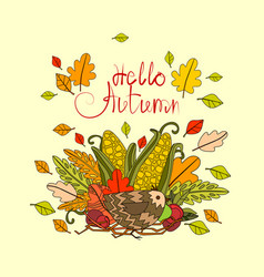 hello autumn season banner with hand draw vector image