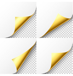 realistic golden curled page corner set greeting vector image
