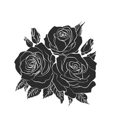 silhouette rose vector image
