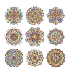 chinese and indian floral pattern color indian vector image