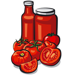 tomatoes and tomato sauce vector image vector image