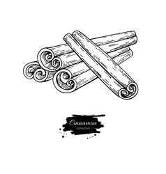 Cinnamon stick drawing hand drawn sketch vector