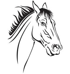 horse portrait vector image vector image