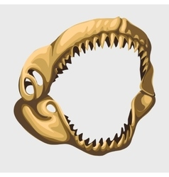Fossil toothy open jaw shark image vector