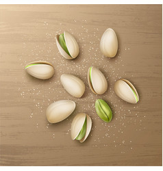Handful of pistachio nuts vector
