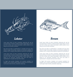 Lobster and bream fish posters vector