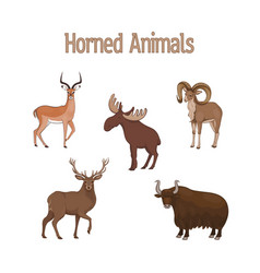 Set cartoon cute horned animals impala urial vector