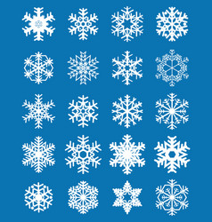 set of different white snowflakes vector image