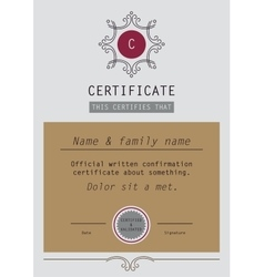 Template Certificate Diploma vector image