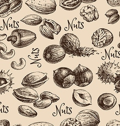 Vintage hand drawn sketch nuts seamless pattern vector