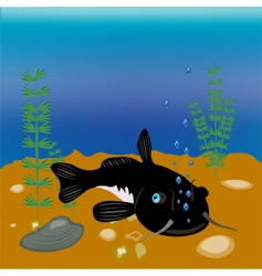 bigfish vector image vector image