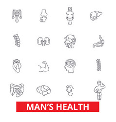 mens health healthy fitness lifestyle active vector image