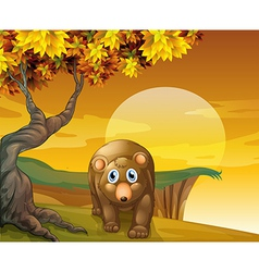 A brown bear beside a big tree near the cliff vector