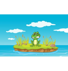 Angry Cartoon Frog vector image
