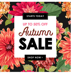 autumn sale tropical banner seasonal promotion vector image