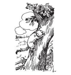 Cat climbing a tree vintage vector