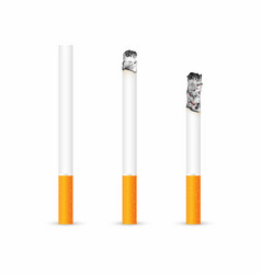 Cigarette with and without ash isolated on white vector
