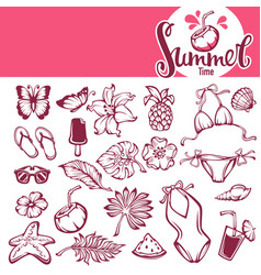 collection summer tropical objects leaves vector image