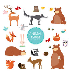 creative cute wild forest animals vector image