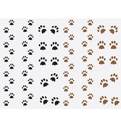 Dog prints vector image