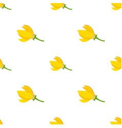 Flower - ylang-ylang cananga seamless pattern vector