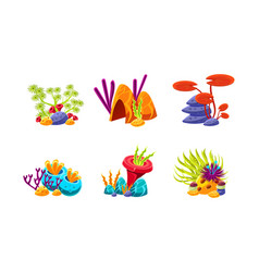 Set of fantasy underwater plants compositions vector