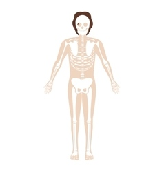 silhouette man system bone with hair vector image