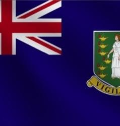 Virgin Islands UK flag vector