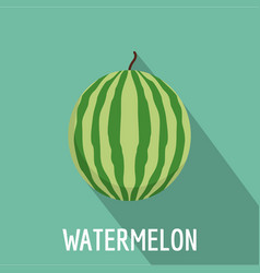 watermelon icon flat style vector image