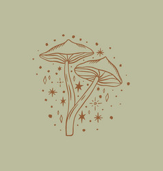 witchcraft mushrooms set magical potion vector image
