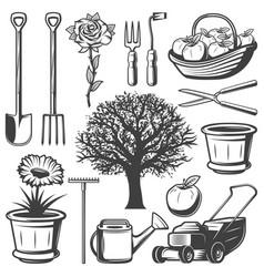 vintage garden elements collection vector image