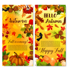 autumn poster fall foliage and pumpkin vector image