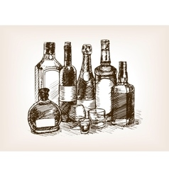 Bottles of alcohol drinks hand drawn sketch vector image