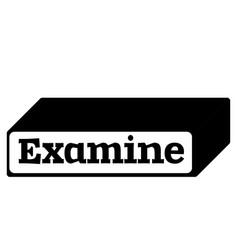 Examine stamp on white background vector