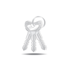 Keys isolated vector image