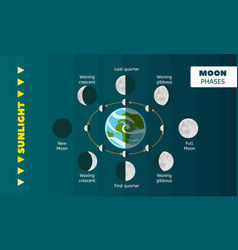 Moon phases concept background flat style vector
